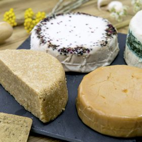 The Vegan Cheese Maker