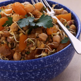 Apricot and Chickpea Salad with Sprouted Pulses