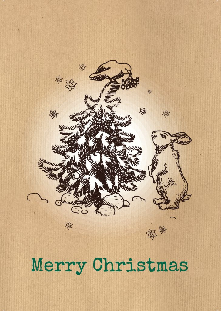 Christmas Cards – Inquisitive Hare