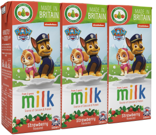 Paw Patrol Strawberry Flavoured Milk (200ml)