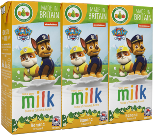 Paw Patrol Banana Flavoured Milk (200ml)