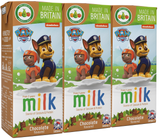 Paw Patrol Chocolate Flavoured Milk (200ml)