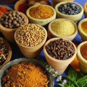 World Street Food – African Veggie