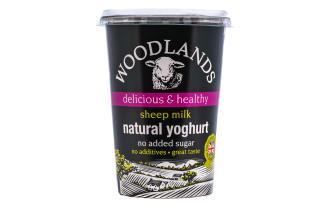 Sheeps Milk Live Yoghurt 450g