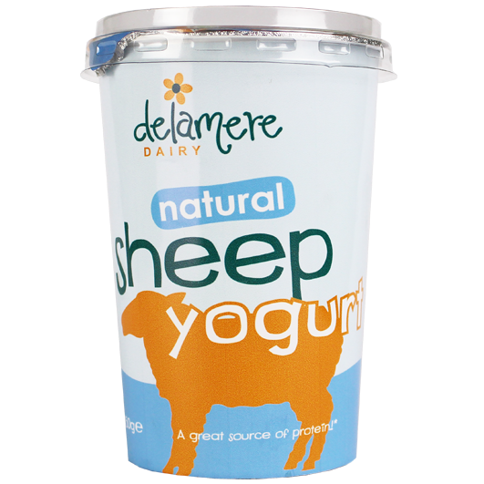 Delamere Dairy Sheep yogurt